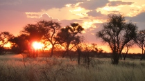 Sunset in Khutse Game Reserve, central Kalahari, Botswana