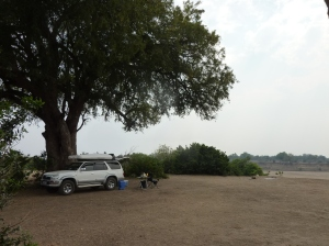 """Much-needed shade tree at Hlare """"exclusive"""" campsite."""
