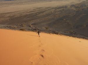 Dunes (5)