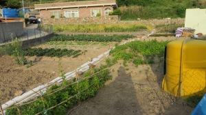 Garden on Heuksan-Do