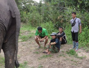 In Cambodia, a mahout (elephant handler) doesn't care whether his gumboots sport flowers, only whether his feet are protected from snakes and scorpions. He spends all day in the jungle with his charge at the Cambodia Wildlife Sanctuary.